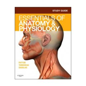 STUDY GUIDE ESSENTIAL ANATOMY PHYSIOLOGY